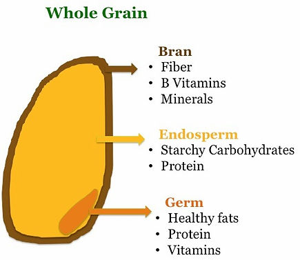 Whole grain parts and their content
