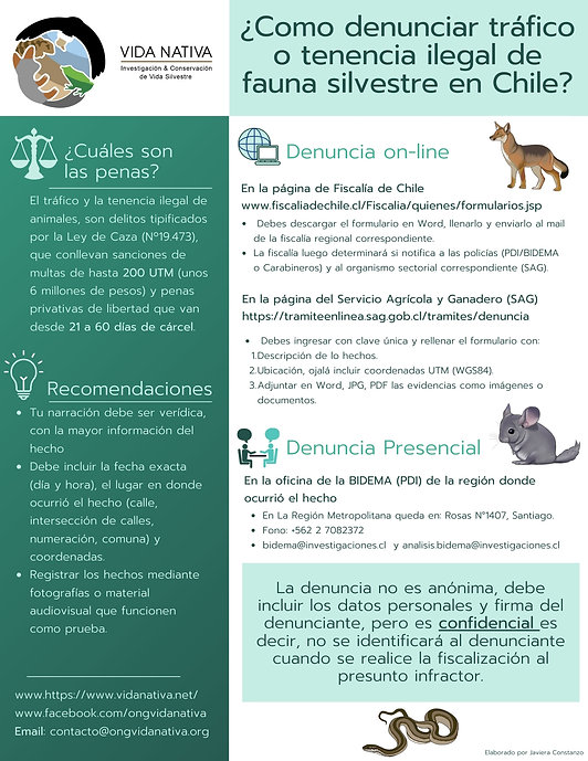 Denuncias_animales.jpeg