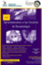 Afiche-curso.jpg
