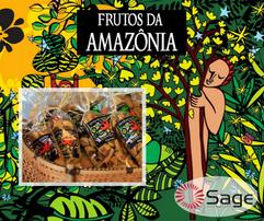 frutos (2).png
