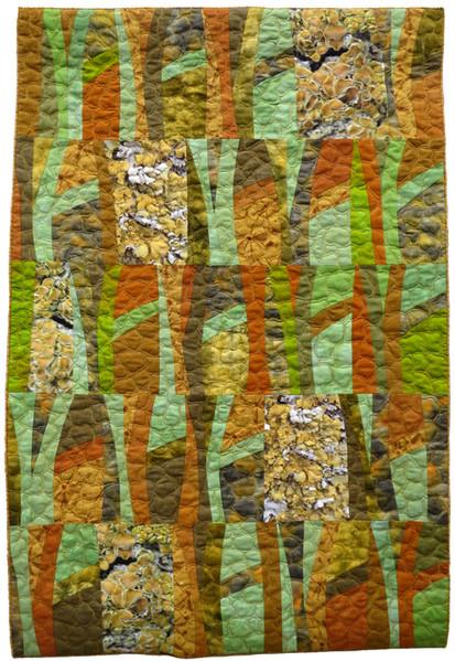 Lichen Summer