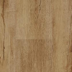 Blazed Oak