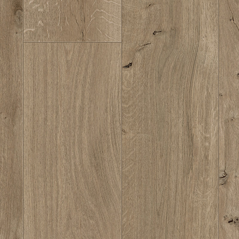 Seashell Oak Narrow & Wide