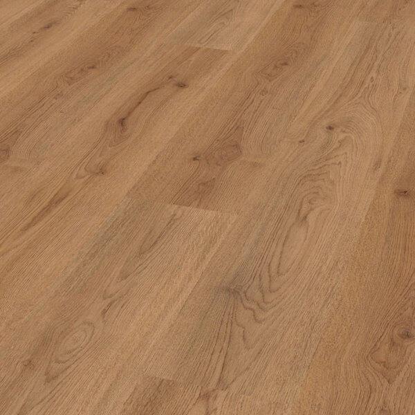Trend Oak Nature