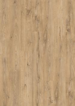Moorland Oak