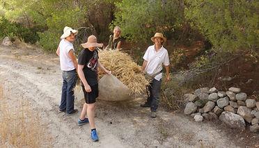 Vrouva Farm Volunteering
