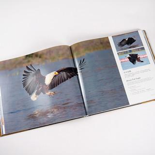 Photo Albums-33.jpg