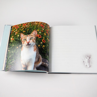 Notebooks-02.jpg
