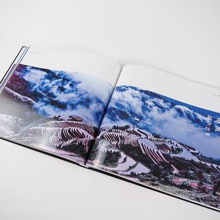 Photo Albums-38.jpg