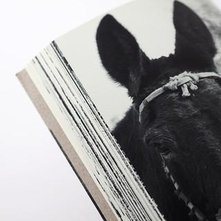 Photo Albums-12.jpg