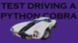 Python Vehicles Cobra