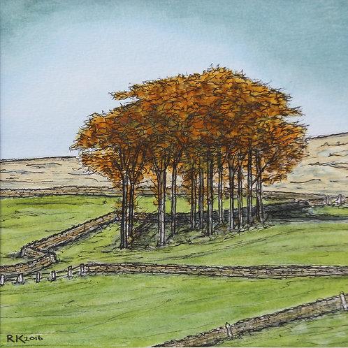 'Above Hayfield'