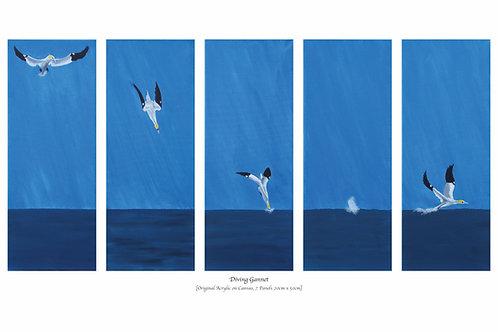 Diving Gannet (70cmx25cm)