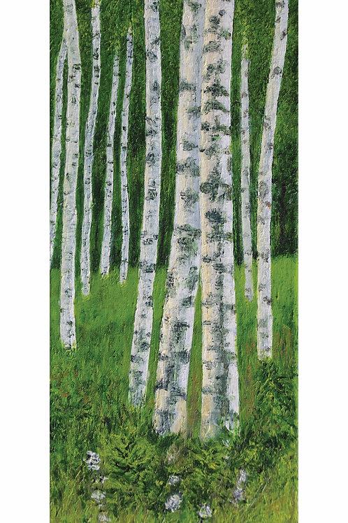 Light on Birches (20cmx50cm)