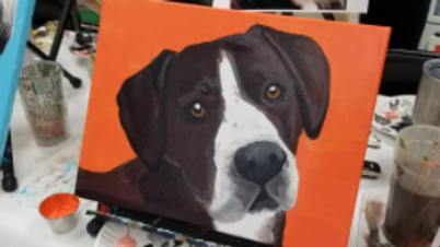 Paint Your Pet PM
