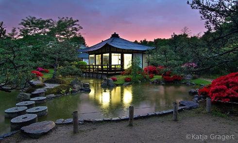 japanschischer-bonsai-garten-ferch-k.jpg