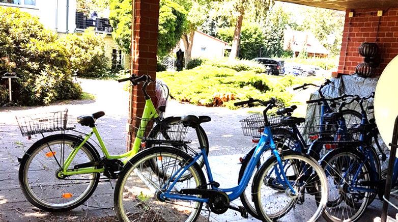 fahrrad-verleih-schwielowsee
