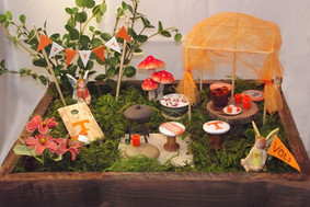 TN Vols Fairy Garden
