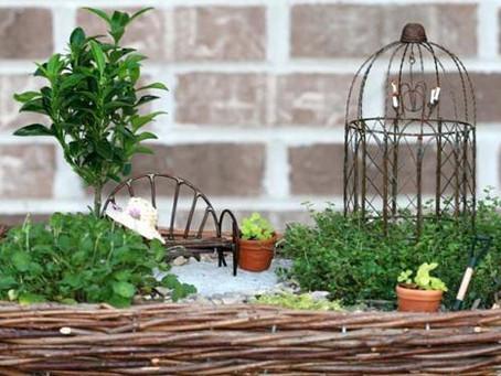 Top Mini Gardening Rookie Mistakes