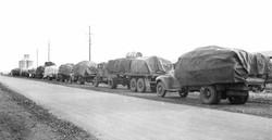 Wheat Harvest - Manilla Railway 1948