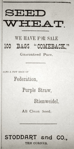 1900s Stoddarts Seed Wheat Ad