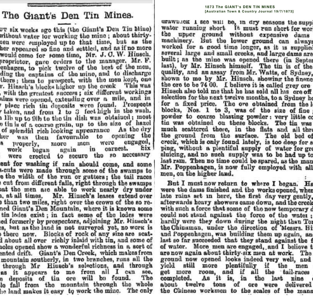 1873 The GIANT's DEN TIN MINES [a]