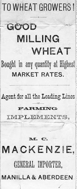 1899 Ad Mackenzies Milling Wheat