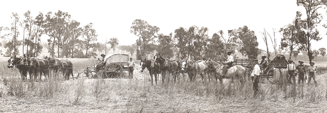 2 Harvesters_Chick Farm _Everton_1900s