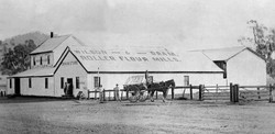 Wilson and Oram Snowcloud Flour Mill Manilla 1900s