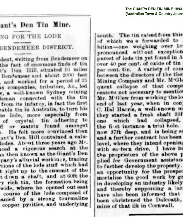 1893 The GIANT's DEN TIN MINE