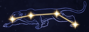 13 Panther.PNG
