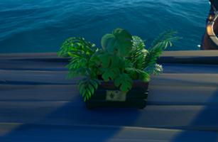 01 Plants.png