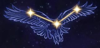 06 Hawk.PNG