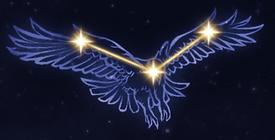 11 Hawk.PNG