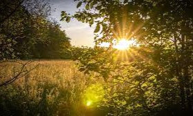 """In Gaelic, the summer solstice is called """"grianstad,"""" which means """"sun stop."""""""
