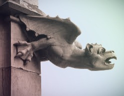 According to French folklore, a decapitated dragon is the inspiration for gargoyles.