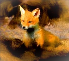 Foxes can be charming, persuasive, and inspirational leaders.