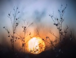 The Longest Day: Summer Solstice