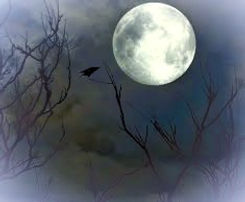 Moon full with raven and tree FFR_edited
