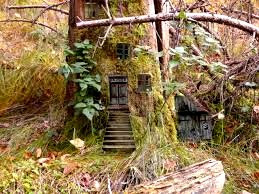 A fairy house found on one of the numerous fairy trails in Ireland.