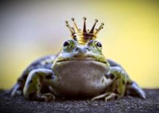 Beware of frogs! They're not all princes. The Welsh Water Leaper devours humans.