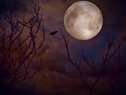 Samhain: the beginning of the darkness.