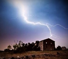 Celtic folklore says that planting the right trees around your home will protect it from lightning.