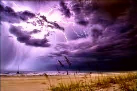 Some Celtic folklore says that Ash trees provide protection from lightning but other Celtic folklore says the Ash attracts lightning.