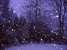 "James Joyce used a description of snow falling outside the window to drive home the theme of his story,""The Dead."""