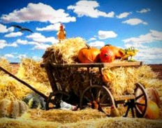 The autumnal equinox is a signal that harvests need to be completed before the frosts come.