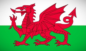 The Red Dragon, symbol of Wales.