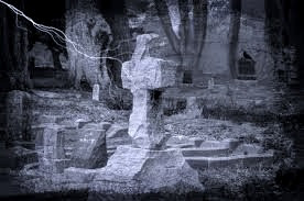 Rowans were planted in graveyards to protect the dead from evil—and to keep the dead from rising.