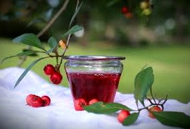 The Celtic roots of U.S. southerners is shown in their tradition of making Mayhaw jelly in May from Hawthorn berries that have dropped from the trees
