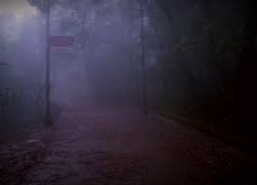Beware walking down a lonely road, particularly at dawn or twilight.  You might encounter a phantom funeral.